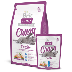 brit kitten food