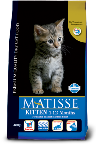 kitten food Matisse