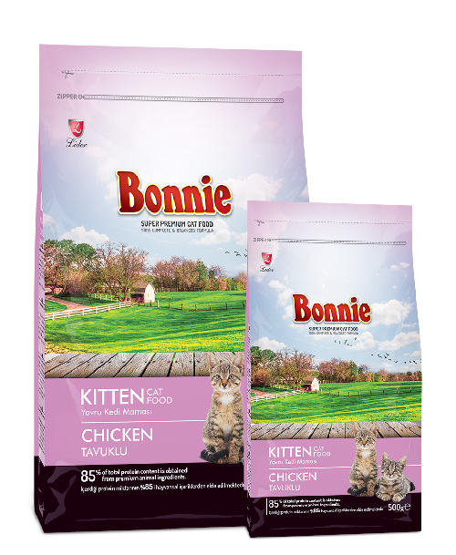 Kitten Food Bonnie