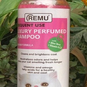 Frequent Use cat shampoo