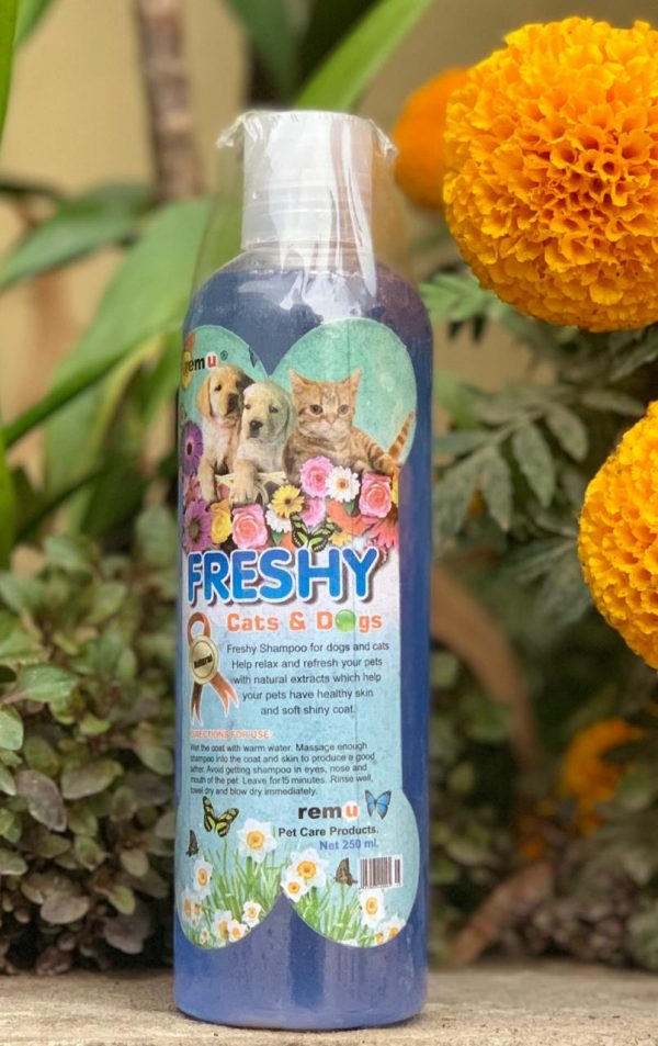 Freshy Dog Shampoo