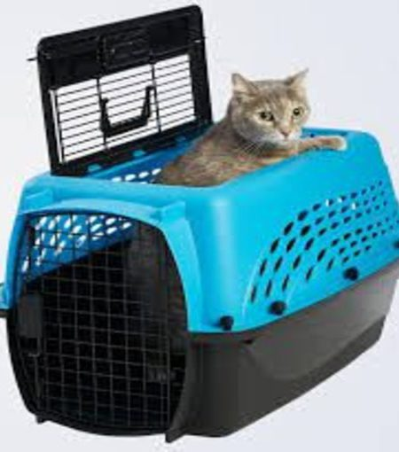 Pet Houses and Carriers