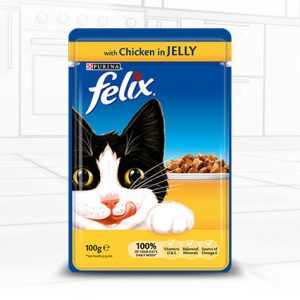 Cat Chicken Jelly Felix