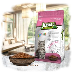 Kitten Food Jungle Chicken